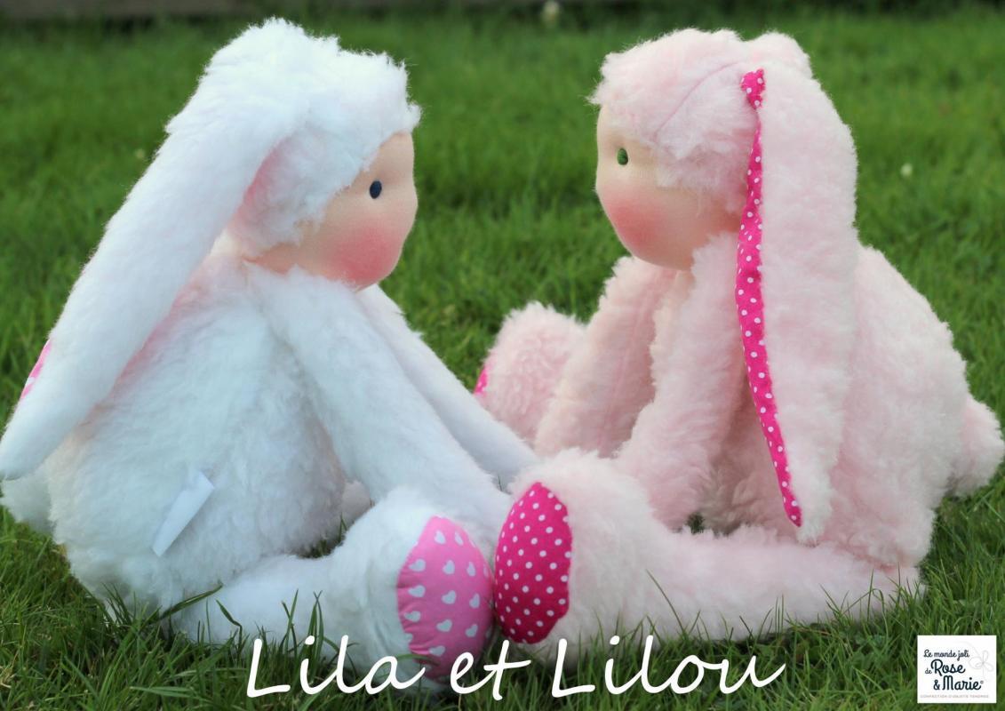 Lila et lilou le monde joli de rose et marie